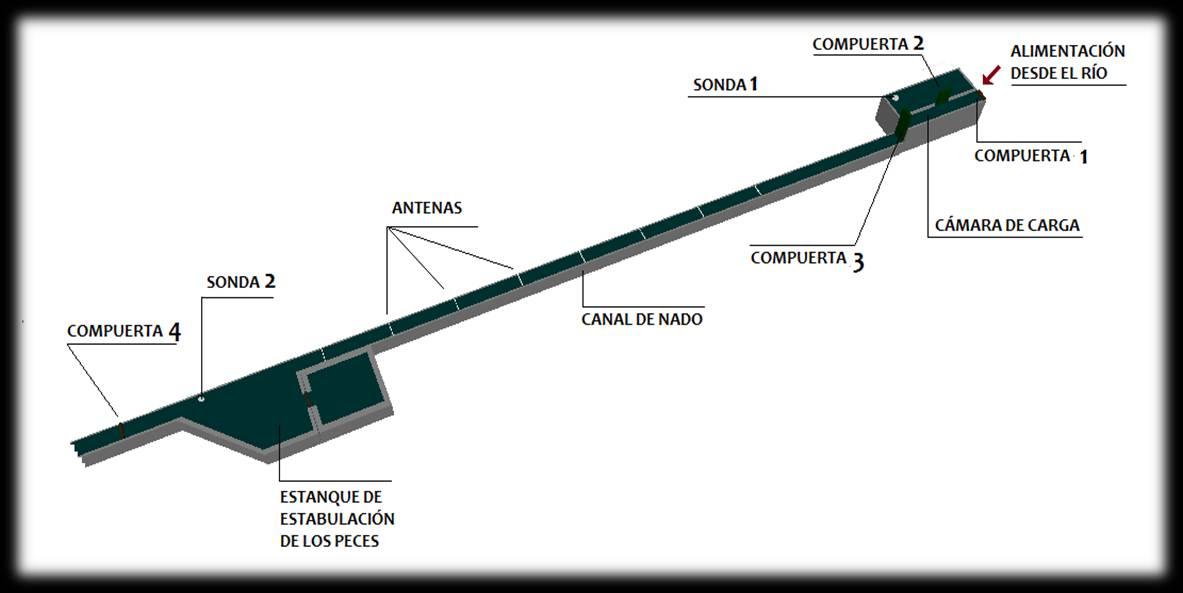 esquema del canal de nado dise ado foto gea