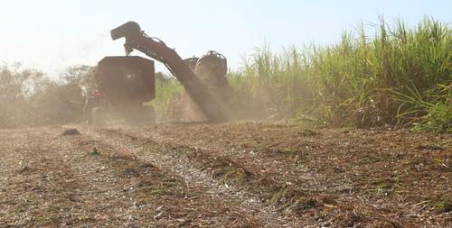 El retiro de la paja del cultivo puede duplicar la necesidad de aplicación de fertilizante/Maurício Cherubin