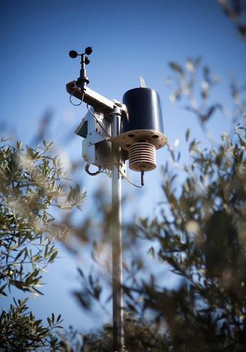 Sensor para sistema de riego. Foto: UPV.
