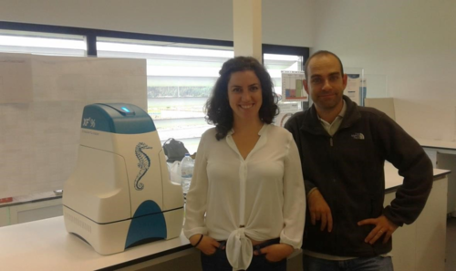 Teresa Serafim junto a uno de los investigadores del laboratorio MitoXT (Mitochondrial Toxicology and Experimental Therapeutics Laboratory) del Centro para la Neurociencia y la Biología Celular de la Universidad de Coimbra (Portugal).