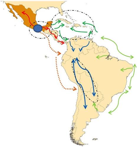 La localización geográfica de las diferentes poblaciones de maíz y sus perfiles genéticos puede reflejar patrones de migración humana conocidos/Bedoya et al (2017)